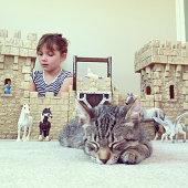 Castle and Kitten