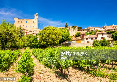 Castello e vigneti in Chateneuf-du-Pape, Provenza, Francia.