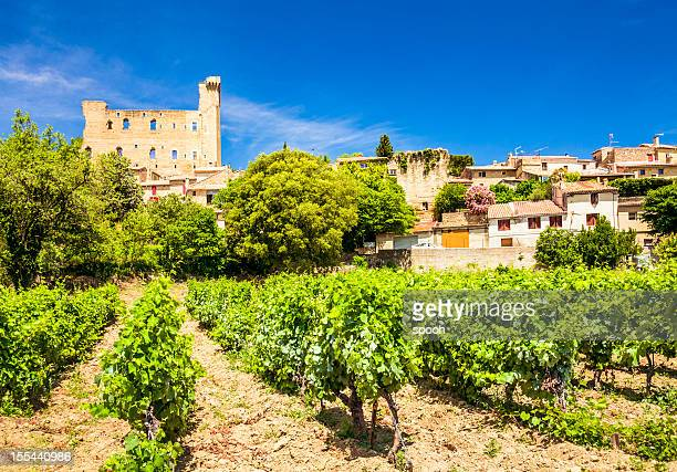 Castle and vineyard in Chateneuf-du-Pape, Provence, France.