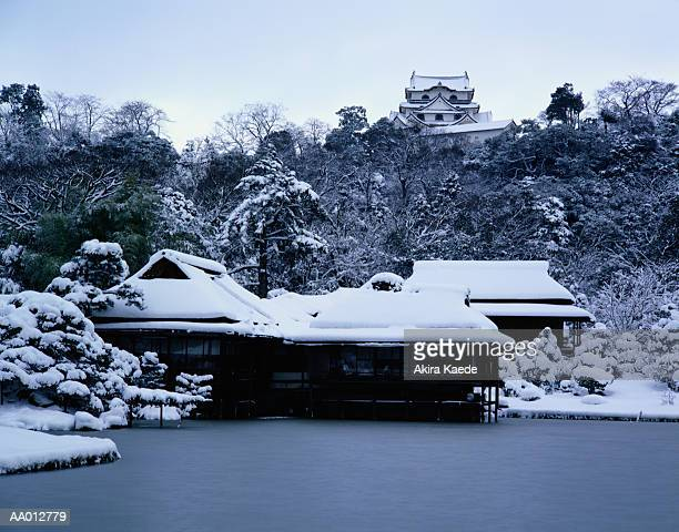 Castle of Hikone in Winter