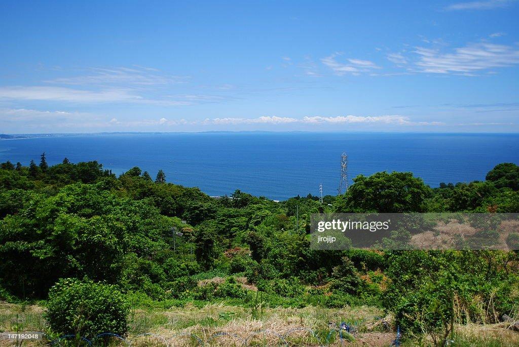 Castle to Sagami bay : Stock Photo