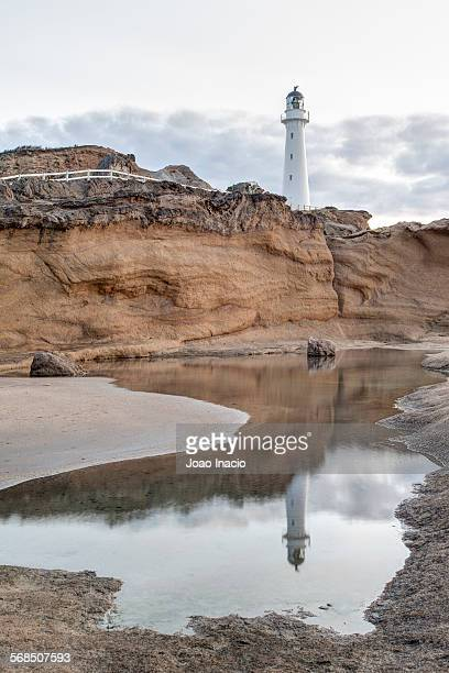 Castlepoint Lighthouse reflection in pool of water