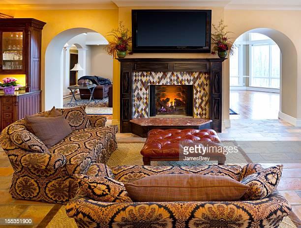 Décontracté, salon avec cheminée, téléviseur haute définition
