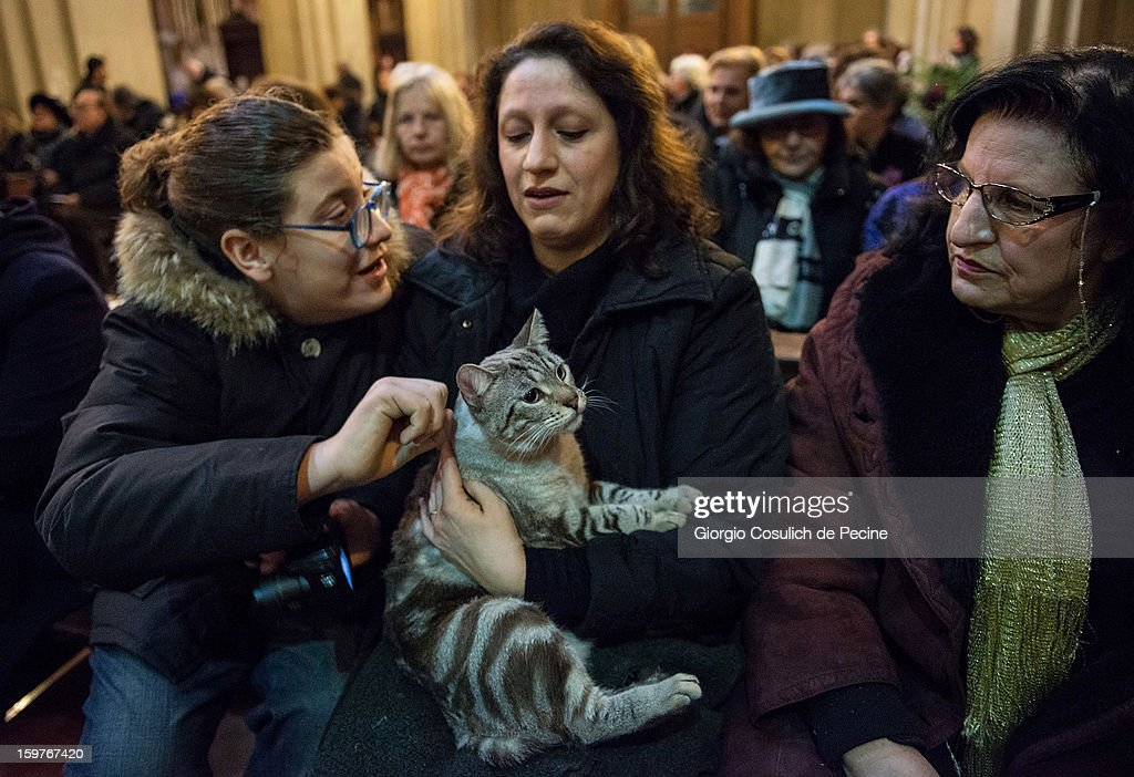 A cat and its owner attend the traditional mass blessing of the animals at the Sant'Eusebio church on January 20, 2013 in Rome, Italy. Every year, during the feast of St. Anthony the Abbot, the traditional blessing of the animals is celebrated.