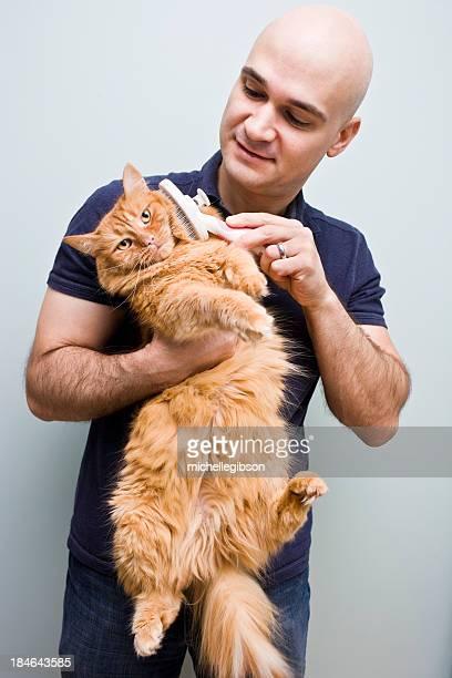 Katze und Pet Grooming