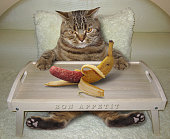 There is a big cat in bed. He is going to eat a strange banana. This banana looks like a real sausage.