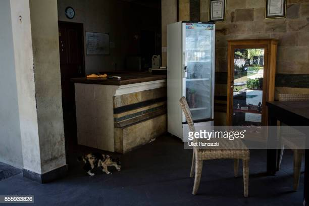 KARANGASEM BALI INDONESIA SEPTEMBER 30 A cat is seen in abandoned hotel as emptied of tourists at Tulamben beach on September 30 2017 in Karangasem...