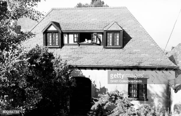 A cat is visible napping in the open window of a home set among trees with electrical lines supplying the home also visible Berkeley California 1950