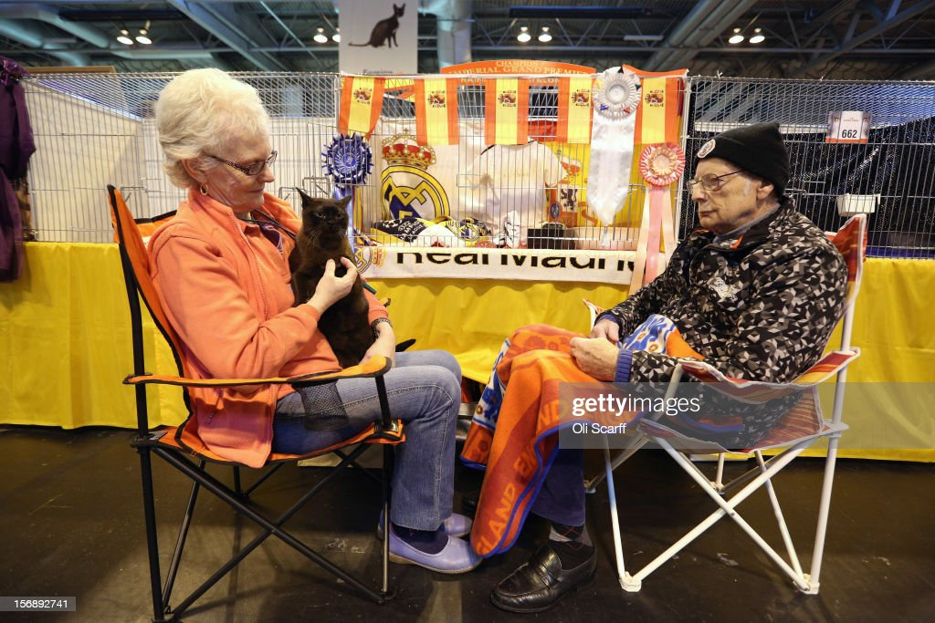 A cat named 'Rainsong Xabi Alonso' sits with its owners before being exhibited at the Governing Council of the Cat Fancy's 'Supreme Championship Cat Show' held in the NEC on November 24, 2012 in Birmingham, England. The one-day Supreme Cat Show is one of the largest cat fancy competitions in Europe with over one thousand cats being exhibited. Exhibitors aim to have their cat named as the show's 'Supreme Exhibit' from the winners of the individual categories of: Persian, Semi-Longhair, British, Foreign, Burmese, Oriental, Siamese.