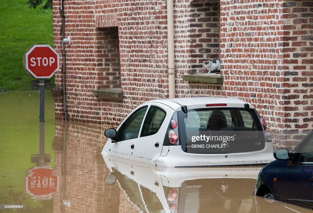 A cat sits onto a window's ledge near submerged cars in the flooded town of Bruay-la-Buissiere, near Lens, northern France, on May 31, 2016, following heavy rainfalls. France's weather agency Meteo France maintained today 18 departments under orange alert for heavy rainfalls, which have already disrupted transports in the northeastern part of the country. / AFP / DENIS