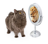 Conceptual image of a cat looking into the mirror and seeing a reflection of a large lion