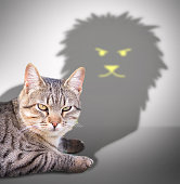 Closeup of profile of a cat casting a lion shadow over a white wall