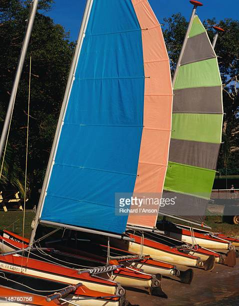 Catamarans for hire on the banks of the Noosa River - Noosa, Queensland