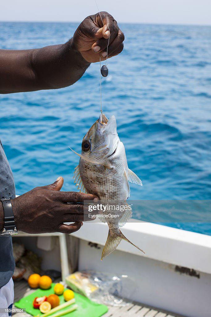 Catch of the day - a porgy fish on a hook at a fishing yacht on June 15, 2012 in Long Island, The Bahamas.