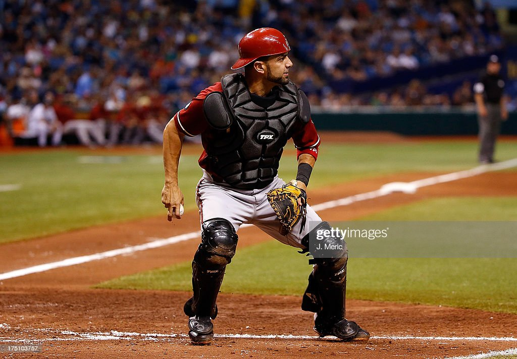 Catcher <a gi-track='captionPersonalityLinkClicked' href=/galleries/search?phrase=Wil+Nieves&family=editorial&specificpeople=835752 ng-click='$event.stopPropagation()'>Wil Nieves</a> #27 of the Arizona Diamondbacks makes a play against the Tampa Bay Rays during the game at Tropicana Field on July 31, 2013 in St. Petersburg, Florida.