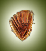 Catcher's mitt