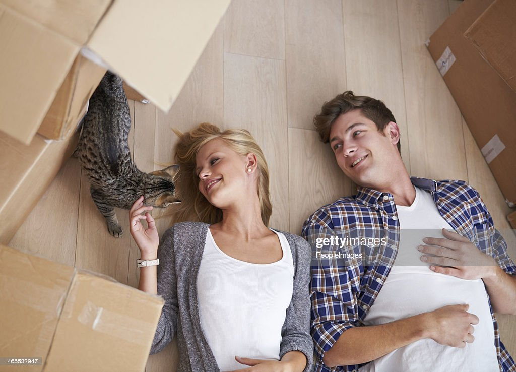 Catching a break while moving house : Stock Photo