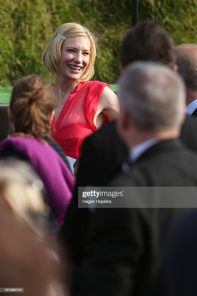 <a gi-track='captionPersonalityLinkClicked' href=/galleries/search?phrase=Cate+Blanchett&family=editorial&specificpeople=201621 ng-click='$event.stopPropagation()'>Cate Blanchett</a>, who plays Galadriel, arrives at the 'The Hobbit: An Unexpected Journey' World Premiere at Embassy Theatre on November 28, 2012 in Wellington, New Zealand.
