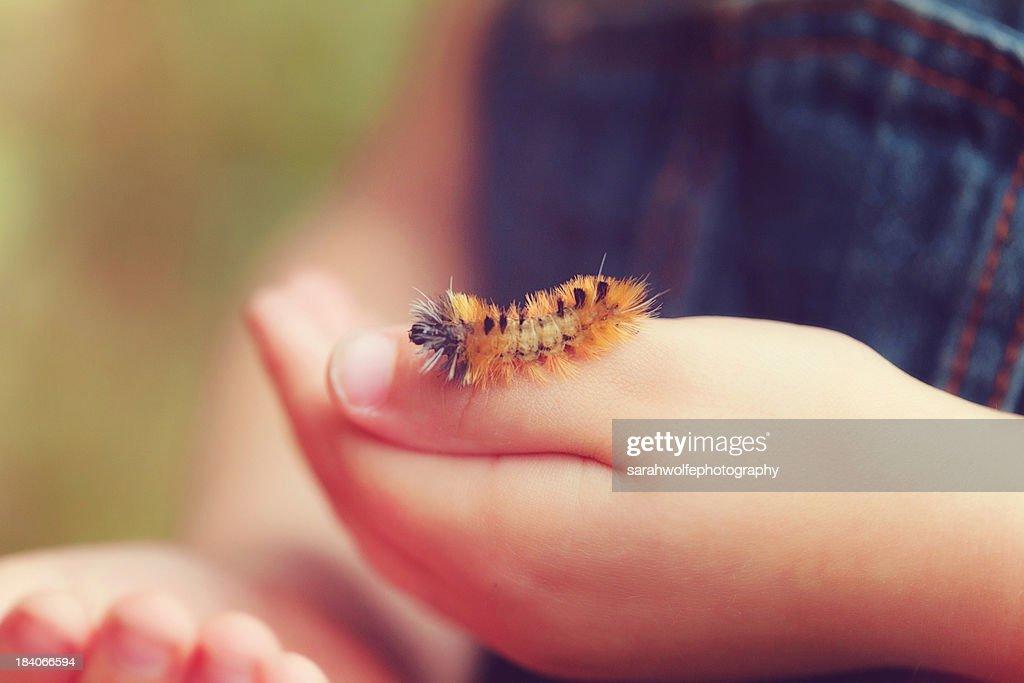 caterpillar on a child's hand