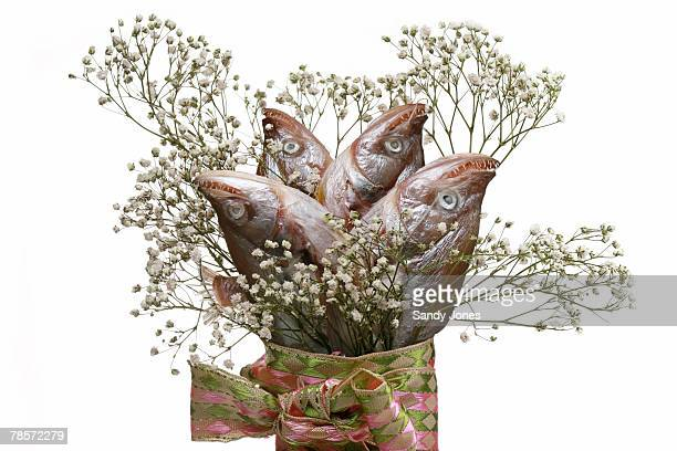 Catfish bouquet on white background