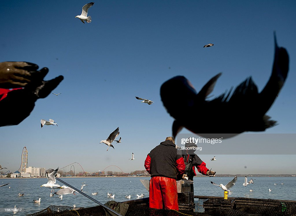 'BEST PHOTOS OF 2012' (): A catfish is tossed into a box while Port Clinton Fisheries Inc. fisherman sort which fish to keep and which to throw back on Lake Erie off of Cedar Point, Ohio, U.S., on Thursday, April 12, 2012. Located on the north shore of Lake Erie, Port Clinton Fisheries catches perch, walleye, and bass among other species of fish. Photographer: Ty Wright/Bloomberg via Getty Images