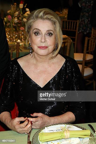 Catherine Deneuve attends the Sidaction Gala Dinner at Pavillon d'Armenonville on January 23 2014 in Paris France