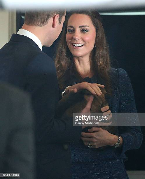 Catherine Duchess of Cambridge and Prince William Duke of Cambridge play with a puppy during their visit to Royal New Zealand Police College in Aotea...