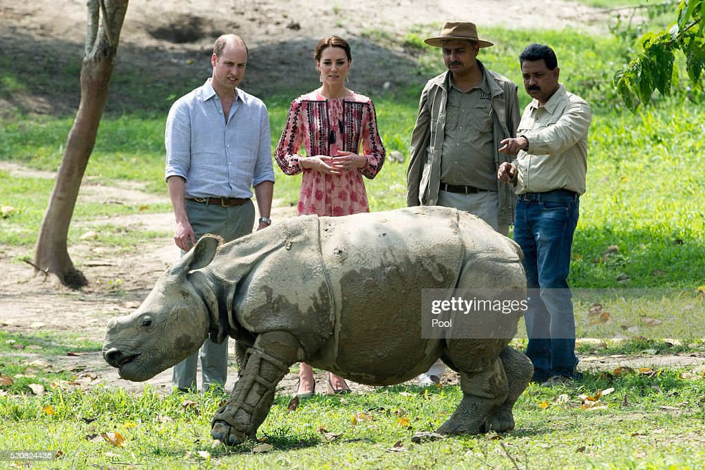 Catherine Duchess of Cambridge and Prince William Duke of Cambridge visit the Centre for Wildlife Rehabilitation and Conservation at Kaziranga...