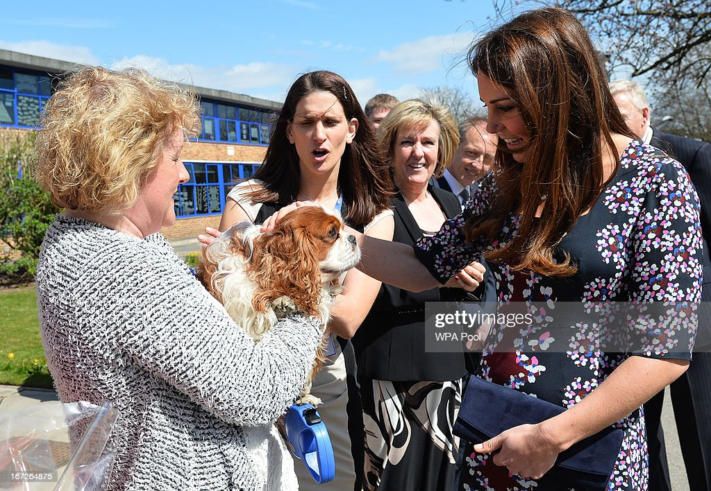 Catherine, Duchess of Cambridge (R), meets the school dog Henry as she arrives to visit The Willows Primary School, Wythenshawe to launch a new school counseling program on April 23, 2013 in Manchester, England. The Duchess of Cambridge met staff and volunteers, teachers and parents at the school as she launched the program which is a partnership between the Royal Foundation, Comic Relief, Place2Be and Action on Addiction.