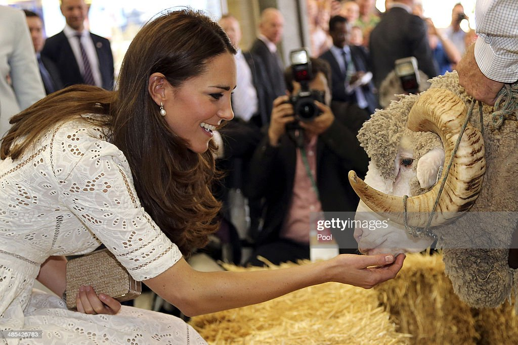 Catherine, Duchess of Cambridge pats Fred the Merino Ram during a visit to the Sydney Royal Easter Show on April 18, 2014 in Sydney, Australia. The Duke and Duchess of Cambridge are on a three-week tour of Australia and New Zealand, the first official trip overseas with their son, Prince George of Cambridge.