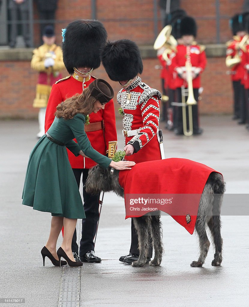 Catherine, Duchess of Cambridge presents a 'shamrock' to the Regimental mascot as she takes part in a St Patrick's Day parade as she visits Aldershot Barracks on St Patrick's Day on March 17, 2012 in Aldershot, England. The Duchess presented shamrocks to the Irish Guards at a St Patrick's Day parade during her visit.
