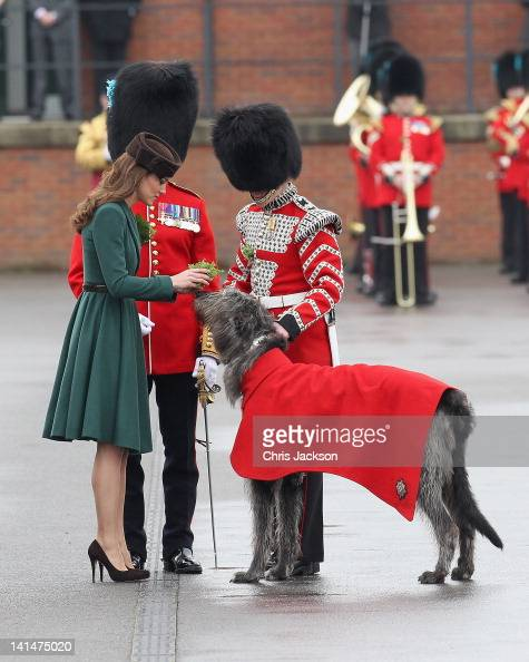 Catherine Duchess of Cambridge presents a 'shamrock' to the Regimental mascot as she takes part in a St Patrick's Day parade as she visits Aldershot...
