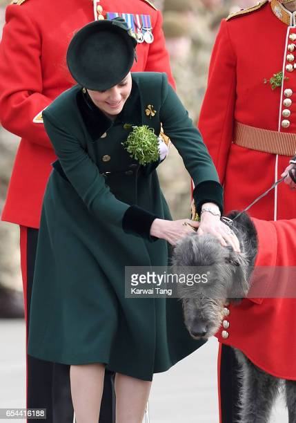 Catherine Duchess of Cambridge presents Domnhall the Band of the Irish Guards Wolfhound Mascot with sprigs of shamrock during the annual Irish Guards...