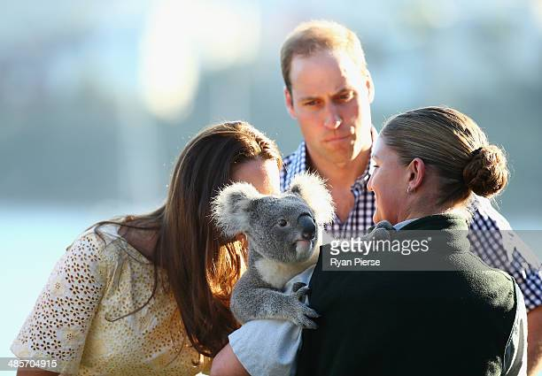 Catherine Duchess of Cambridge smells a Koala as Prince William Duke of Cambridge looks on at Taronga Zoo on April 20 2014 in Sydney Australia The...