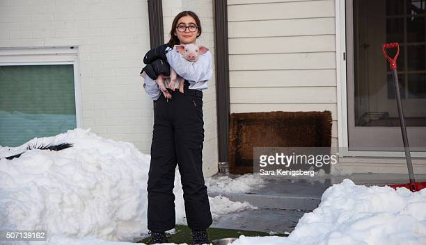 Catherine Smith carries Wee Wee the piglet January 25 2016 in Chevy Chase Maryland Smith and her family rescued the piglet during winter storm Jonas...