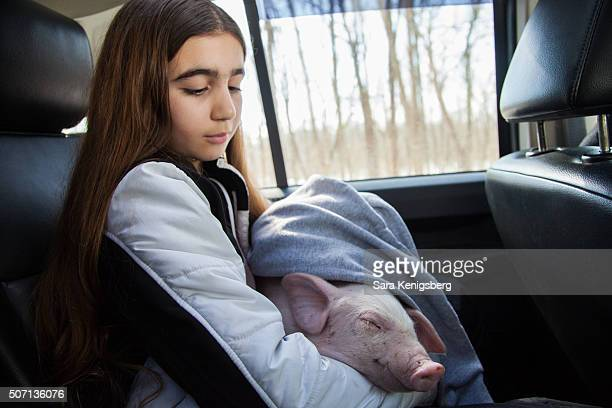 Catherine Smith holds Wee Wee the piglet in the car January 27 2016 in Chevy Chase Maryland Smith and her family rescued the pig during winter storm...