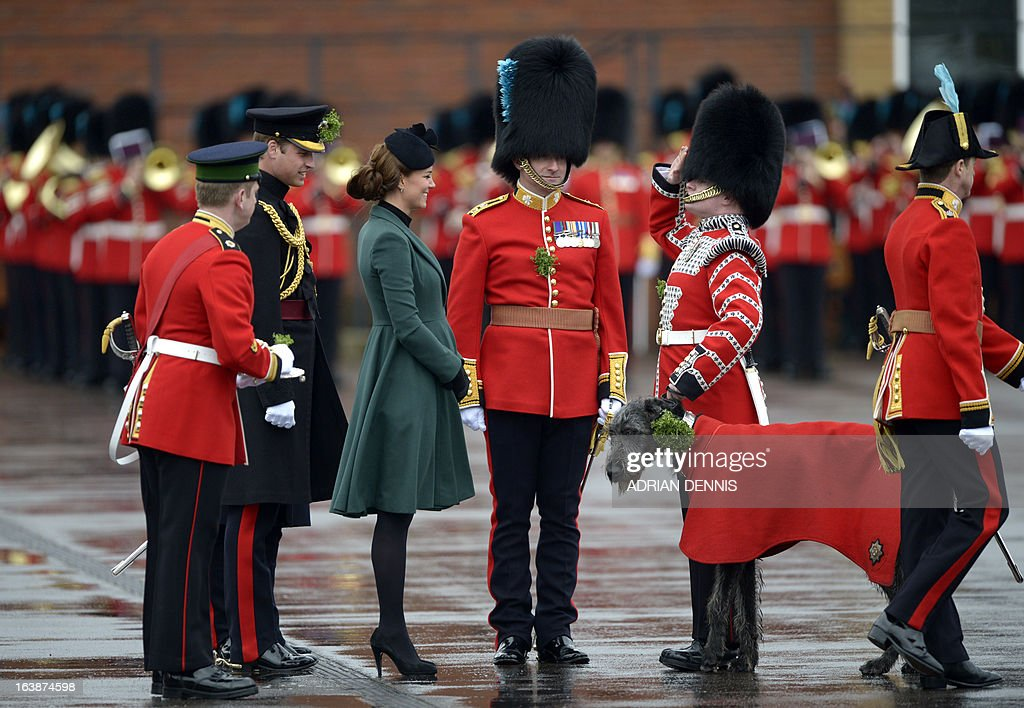 Catherine, the Duchess of Cambridge, presents a bunch of shamrock, Ireland's three-leafed floral emblem, to the regimental wolfhound mascot of the 1st Battalion Irish Guards during St Patrick's Day parade in Mons Barracks in Aldershot on March 17, 2013. William, the Duke of Cambridge attends the parade as Colonel of the Regiment and Catherine presents the traditional sprigs of shamrocks to the Officers and Guardsmen of the Regiment.