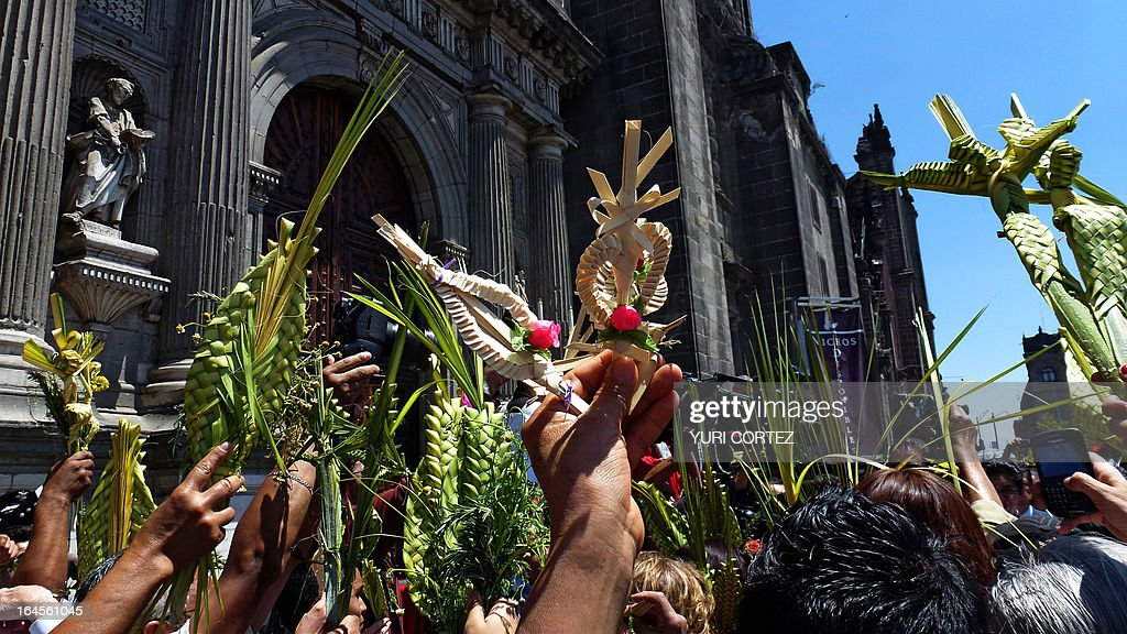 Catholics take part in the traditional Palm Sunday procession by the Cathedral in Mexico City on March 24, 2013. Palm Sunday marks the beginning of Holy Week, and commemorates Christ's triumphant entry into Jerusalem on the back of a donkey, welcomed by crowds waving palm branches, before his arrest, trial, crucifixion and resurrection. It is traditionally marked by a procession and special mass. AFP PHOTO/ Yuri CORTEZ
