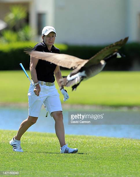 Catriona Matthew of Scotland is startled by a low floying goose after she had played her second shot at the par 5 18th hole during the second round...