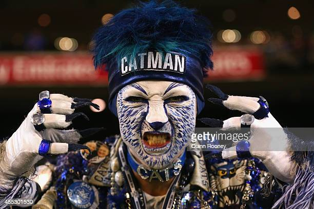 Cats fan show his support during the AFL 2nd Semi Final match between the Geelong Cats and the North Melbourne Kangaroos at the Melbourne Cricket...