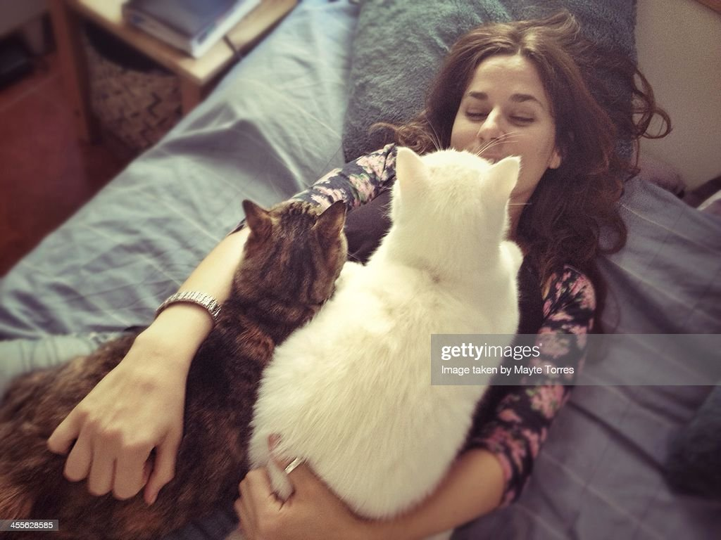 cats on top of a woman : Stock Photo