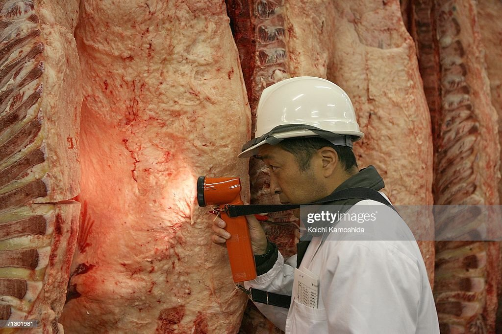 a cattle buyer checks beef at the tokyo metropolitan central wholesale market june 27 2006 - Wholesale Buyer Resume