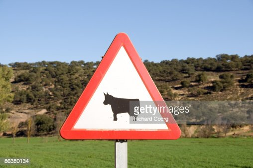 Cattle Warning Sign : Foto stock