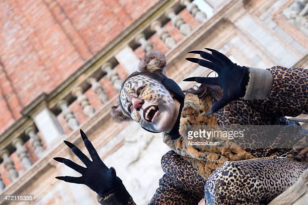 Cat-Woman Mask at San Marco, Carnival 2013, Venice, Italy