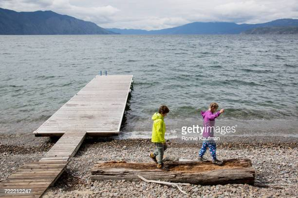 Caucasian boy and girl balancing on log near dock at lake