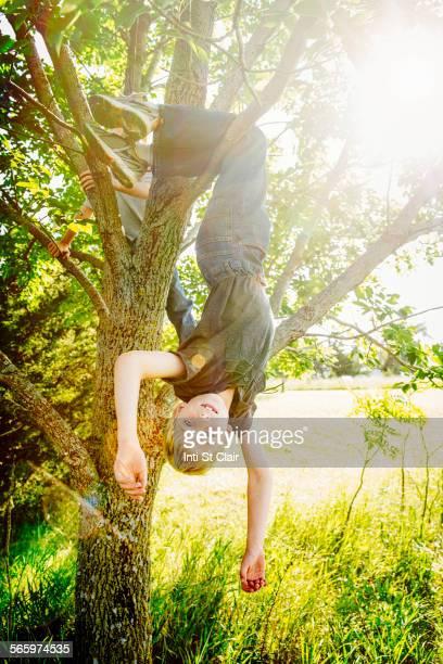 Caucasian boy hanging from tree