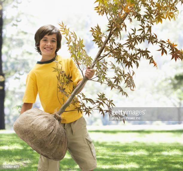 Caucasian boy holding sapling tree