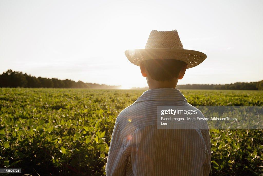 Caucasian boy overlooking rural field : Foto de stock