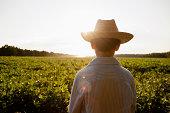 Caucasian boy overlooking rural field