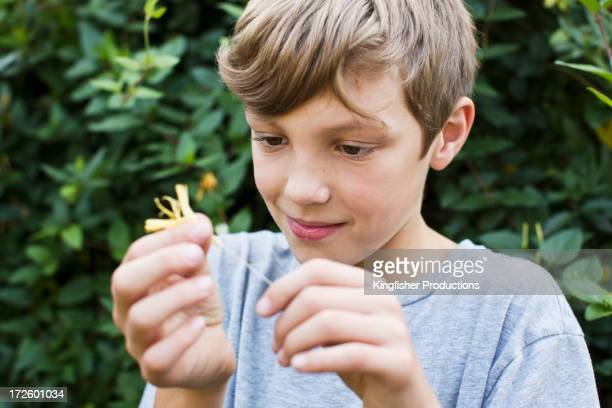 Caucasian boy playing with autumn leaf